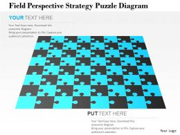 0115 Field Perspective Strategy Puzzle Diagram Powerpoint Template