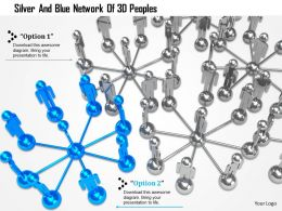 0115 Silver And Blue Network Of 3d Peoples Ppt Graphics Icons