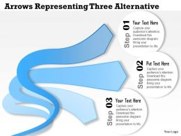 0314 Business Ppt Diagram Arrows Representing Three Alternative Powerpoint Template