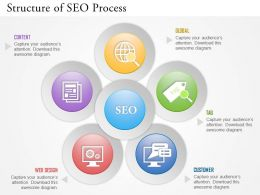0314 Business Ppt Diagram Structure Of SEO Process Powerpoint Template