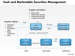 0314 Cash and Marketable Securities Management Powerpoint Presentation