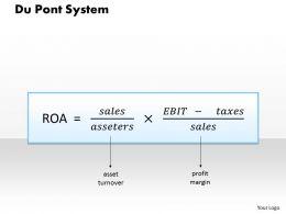 0314 Du Pont System Powerpoint Presentation