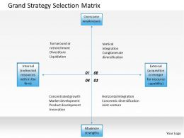 0314 Grand Strategy Selection Matrix Powerpoint Presentation