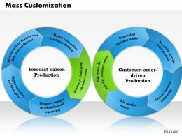 0314 Mass Customization Powerpoint Presentation