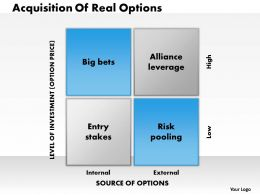 0314 Real Options Powerpoint Presentation