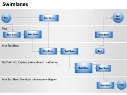 0314 Swimlanes Business Control Diagram