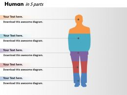 0414 Column Chart Human Body Illustration Powerpoint Graph