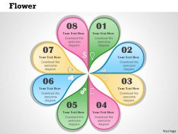 0414 Flower Diagram Powerpoint Presentation