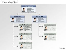 0414 Hierarchy Chart Powerpoint Presentation