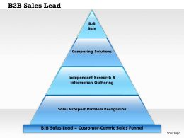 0514 B2B Sales Lead Powerpoint Presentation