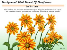 0514 background with bunch of sunflowers Image Graphics for PowerPoint