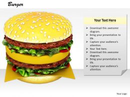 0514 Classic Hamburger Sandwich Image Graphics For Powerpoint