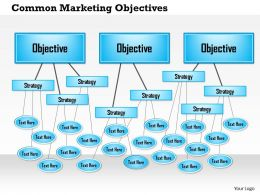 0514 Common Marketing Objectives Powerpoint Presentation