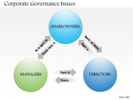 0514 Corporate Governance Issues Powerpoint Presentation