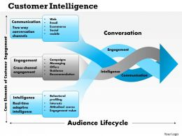 0514 Customer Intelligence Powerpoint Presentation