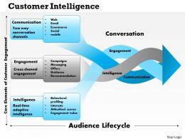 0514 Customer Intelligence Powerpoint Presentation