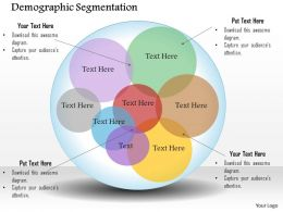 0514 Demographic Segmentation Powerpoint Presentation