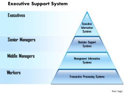 0514 Executive Support System Powerpoint Presentation