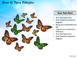 0514 Group Of Flying Butterflies Image Graphics for PowerPoint