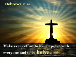 0514 Hebrews 1214 Make every effort to live PowerPoint Church Sermon