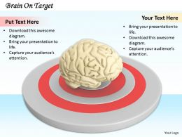 0514 Hit The Brain Target Stock Photo Image Graphics For Powerpoint
