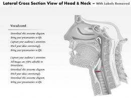 0514 Lateral Cross Sectional View Of Head And Neck Laryngeal Anatomy Medical Images For Powerpoint