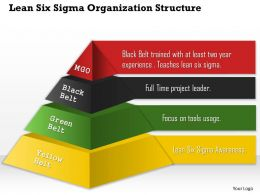 0514 Lean Six Sigma Organization Structure Powerpoint Presentation