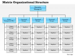 0514 Matrix Organizational Structure Powerpoint Presentation