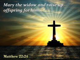 0514 Matthew 2224 Mary The Widow Powerpoint Church Sermon