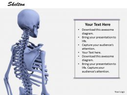 0514 Model Of Human Body Skeleton Image Graphics For Powerpoint