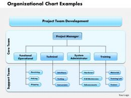 0514 organizational chart examples Powerpoint Presentation