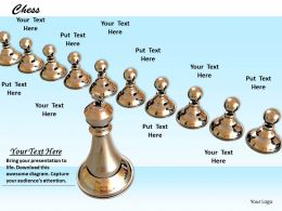 0514_silver_chess_player_graphic_design_image_graphics_for_powerpoint_Slide01