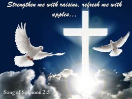 0514_song_of_solomon_25_refresh_me_with_apples_powerpoint_church_sermon_Slide01