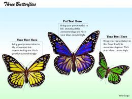 0514 three colorful butterflies Image Graphics for PowerPoint