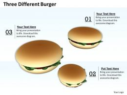 0514 Three Different Burger Image Graphics For Powerpoint