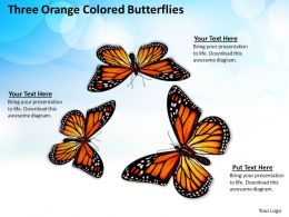 0514 three orange colored butterflies Image Graphics for PowerPoint