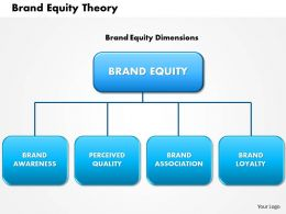 0614 Brand Equity Theory Powerpoint Presentation Slide Template
