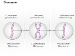 0614 Chromosomes Medical Images For PowerPoint