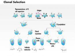 0614 Clonal Selection Medical Images For PowerPoint