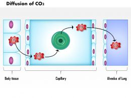 0614 Diffusion Of CO2 Medical Images For Powerpoint