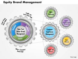0614 Equity Brand Management Powerpoint Presentation Slide Template