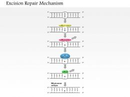 0614 Excision Repair Mechanism Medical Images For Powerpoint