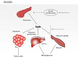 0614 Insulin Medical Images For PowerPoint