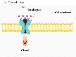 0614 Ion Channel Close Medical Images For PowerPoint