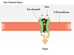 0614 Ion Channel Open Medical Images For PowerPoint