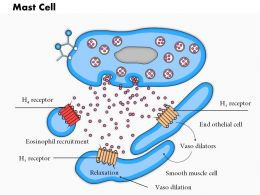 0614 Mast Cell Medical Images For Powerpoint