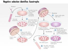 0614_negative_selection_identifies_auxotrophs_medical_images_for_powerpoint_Slide01