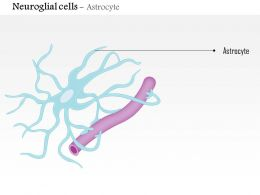 0614 Neuroglial cells Astrocyte Medical Images For PowerPoint