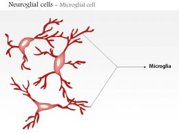 0614 Neuroglial cells Microglia Medical Images For PowerPoint