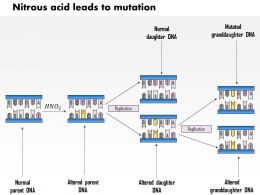 0614 Nitrous Acid Leads To Mutation Medical Images For Powerpoint